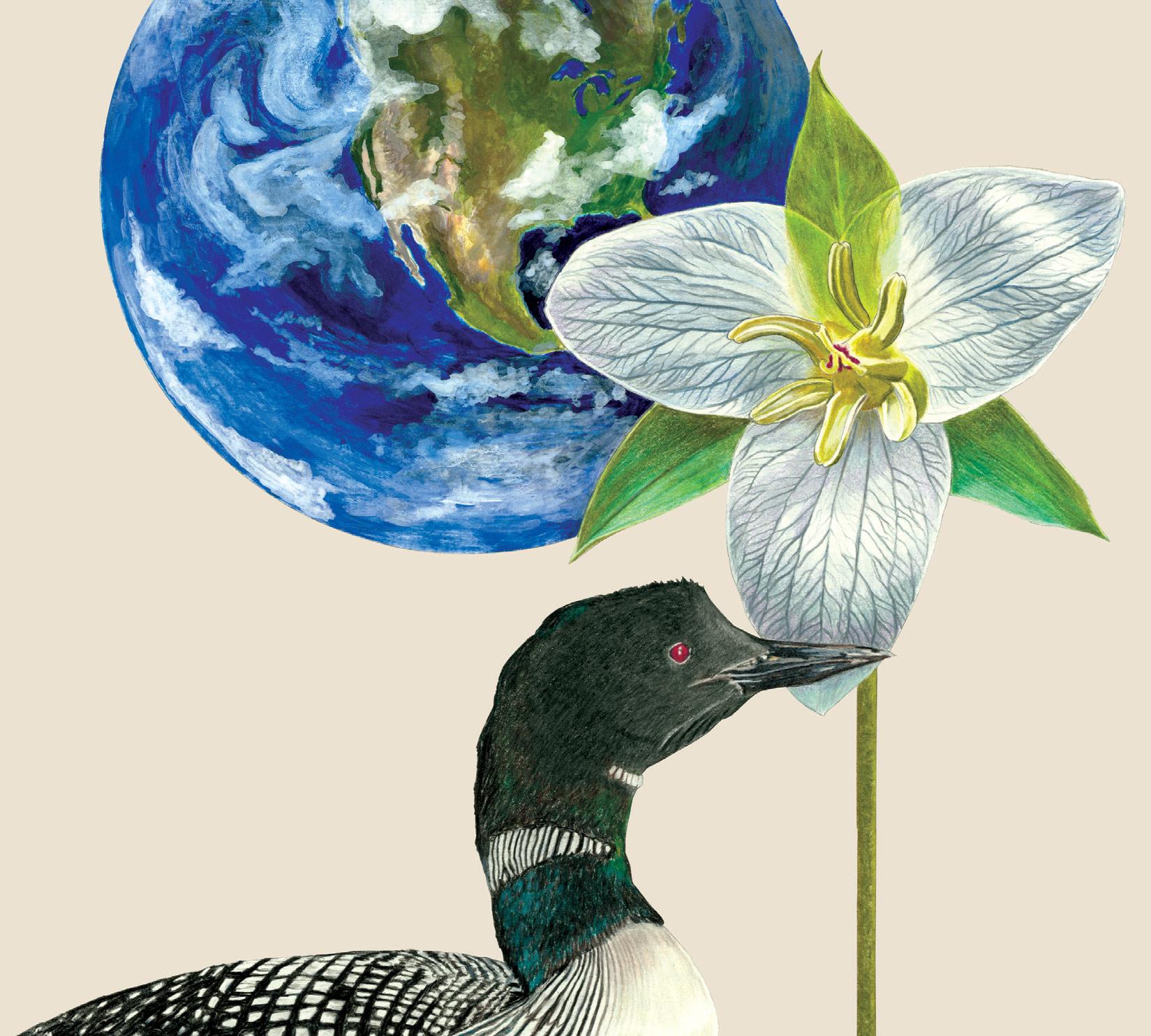 Grateful Dead Spring 1990 The Other One Hamilton 3/21/90 album cover artwork